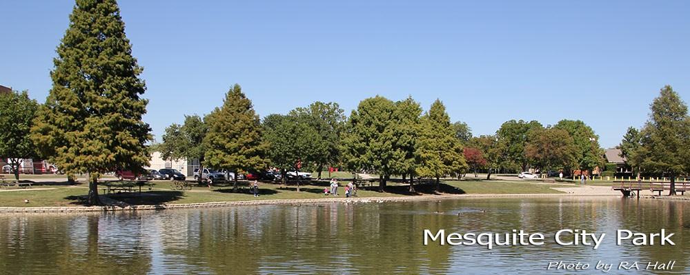 All About Mesquite Texas Tx Local Information About Mesquite